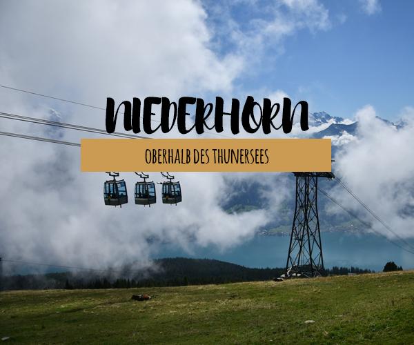 Wanderglück auf dem Niederhorn