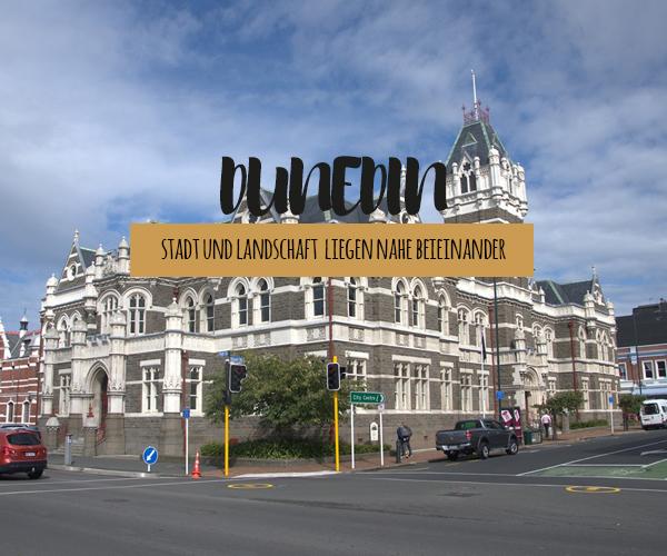 Dunedin und die Umgebung: Ausflugsziele sowie Sehenswürdigkeiten