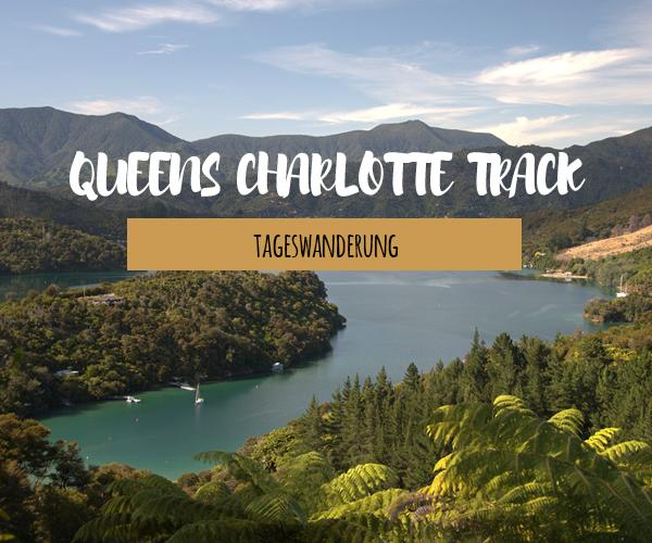 Tageswanderung auf dem Queens Charlotte Track
